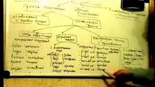 Латинский синтаксис Урок 2. Винительный тематические группы