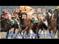 2017年京都牝馬S予想~京都1400mに強い血で勝負!~