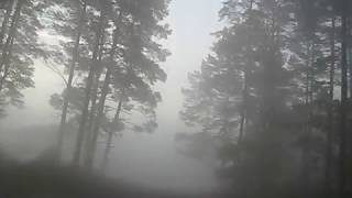 miglas video