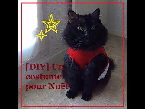 [DIY/TUTO] Costume Pour Chat Avec Un Bonnet De Noël