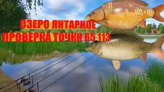 Русская Рыбалка 4 озеро Янтарное проверка точки 65 113 Russian Fishing 4