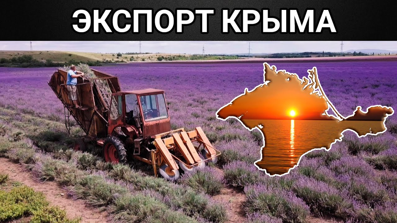 Крымский экспорт.  Документальный фильм (2020)