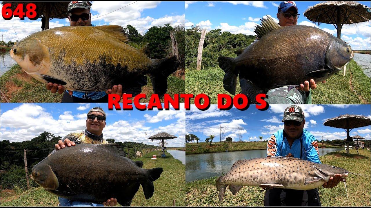 Ventania e muitos peixes no Pesque Pague Recanto do S - Programa Fishingtur na TV 648