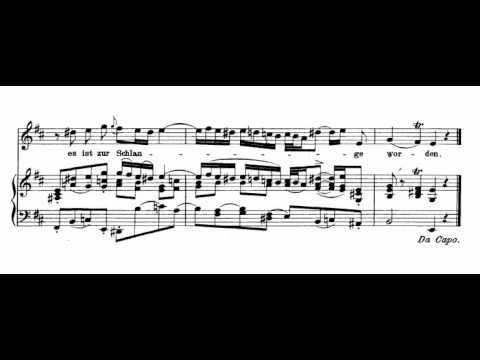 Blute nur, du liebes herz! (J. S. Bach - Matthäus-Passion) Score Animation