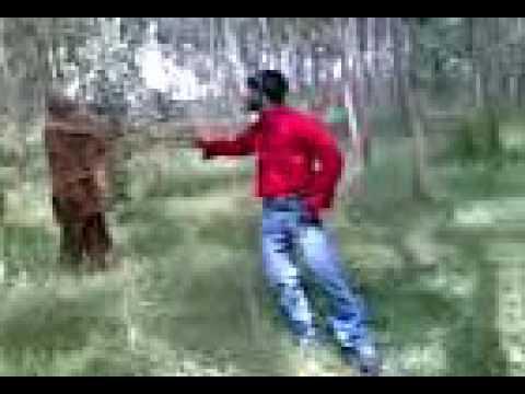 Naa Pranama Nanu Vidipokuma Emotional Love Song Telugu Video shiva