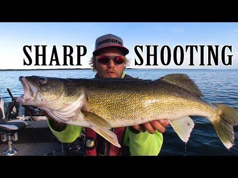 Sharpshooting Walleye In Northern Manitoba