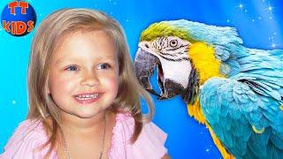 ВЛОГ Самый Веселый Контактный Зоопарк для детей МНОГО животных / Кормим, гладим, играем с животными