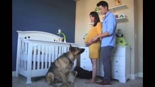 Американец снял таймлапс о беременности жены