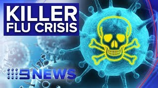 82-south-australians-lost-lives-flu-season-news-australia