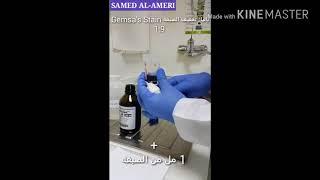Thick and Thin BLOOD FILM staining by Giemsa stain  طريقة تحضير الصبغه وصبغ مسحة الدم