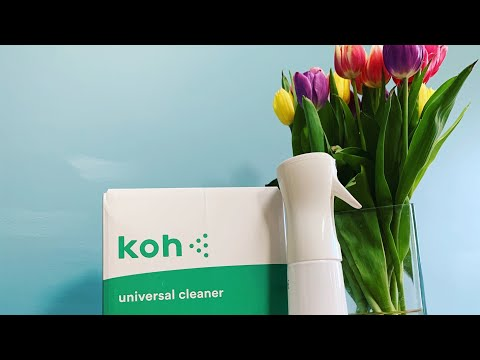My Koh experience Part 2 arrival and clean