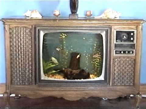 Old Tv Cabinet Turned Into Aquarium Youtube