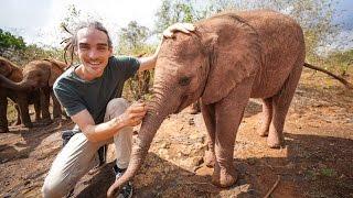 BABY ELEPHANT FARTS - Kenya Trip Day 6