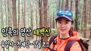 민족의 영산 태백산 국립공원 나홀로 등산 장군봉 천제단…