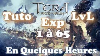 Tera - Tuto Exp LvL 1 à 65 en Quelques Heures [Lomitall #193]