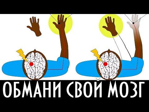 Видео: 5 СПОСОБОВ ОБМАНУТЬ СВОЙ МОЗГ