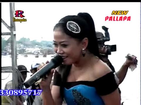 lilin herlina ilalang- New Pallapa live sarang