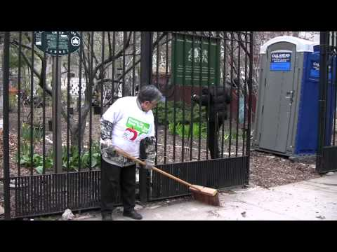 Community Gardens - The Lungs of NYC