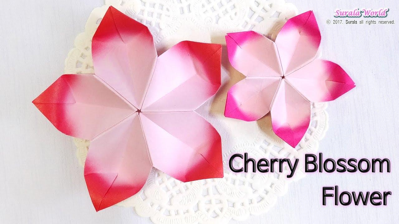 Origami - Cherry Blossom Flower - YouTube - photo#7