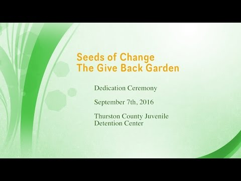 Seeds of Change - The Give Back Garden