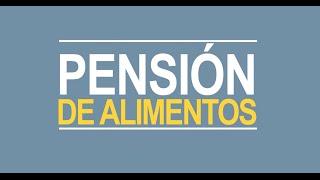 Noticiero Judicial: Cápsula Educativa - Pensión de alimentos