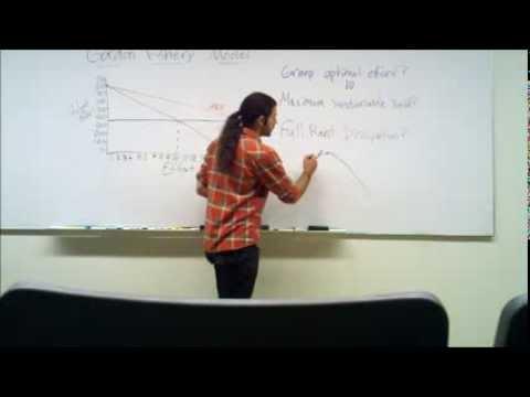 Economics Tutoring Series - Fisheries and the Gordon Model