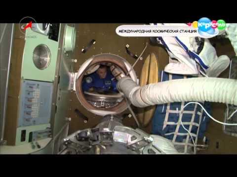 Мультфильм пора в космос