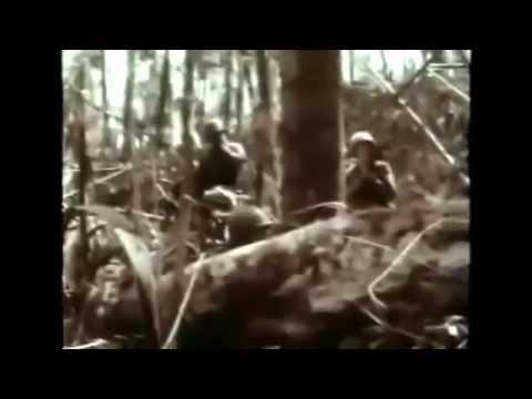 Vietnam War Documentary History Channel, America Enters the War