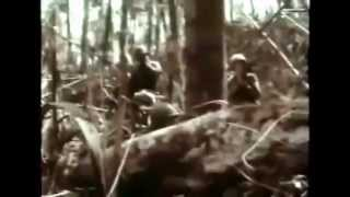 Vietnam War Documentary History Channel, America Enters the War