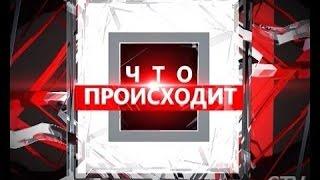 Мы в программе «Что происходит» на РТР Беларусь. Тема: Обращение с домашними животными