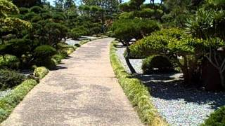 Japanese Gardens Hayward California 1 (Intro)