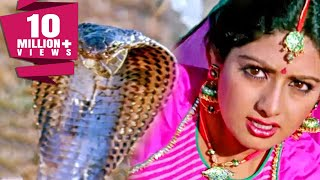 साँपों ने बचाई श्रीदेवी की जान | नगीना | Sridevi, Rishi Kapoor | Bollywood Movie Best Scene| Nagina