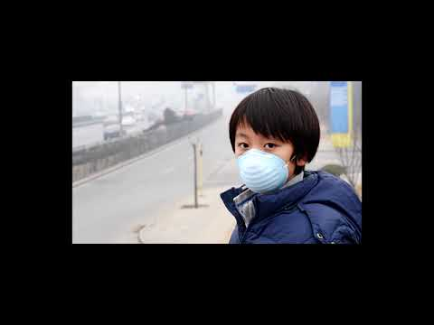 Ecology project: Air Pollution