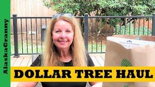 Dollar Tree Party Haul - Prepping Supplies Prepper Ideas