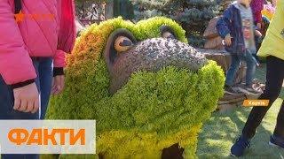 Цветочный бал в Харькове: 40 тыс. хризантем, театр животных и конное шоу