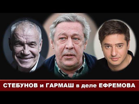 Стебунов и Гармаш=Нестыковки в деле Михаила Ефремова