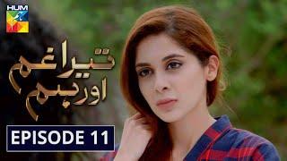 Tera Ghum Aur Hum Episode 11 HUM TV Drama 5 August 2020