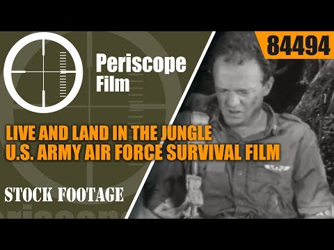 LIVE AND LAND IN THE JUNGLE   U.S. ARMY AIR FORCE SURVIVAL FILM  PART I  84494