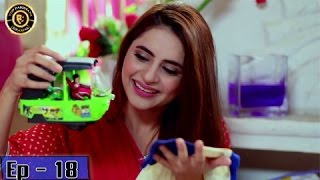 Zindaan - Ep 18 - 23rd May 2017 - ARY Digital Drama