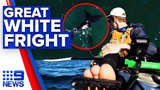 Fisherman recalls close encounter with great white shark   9 News Australia