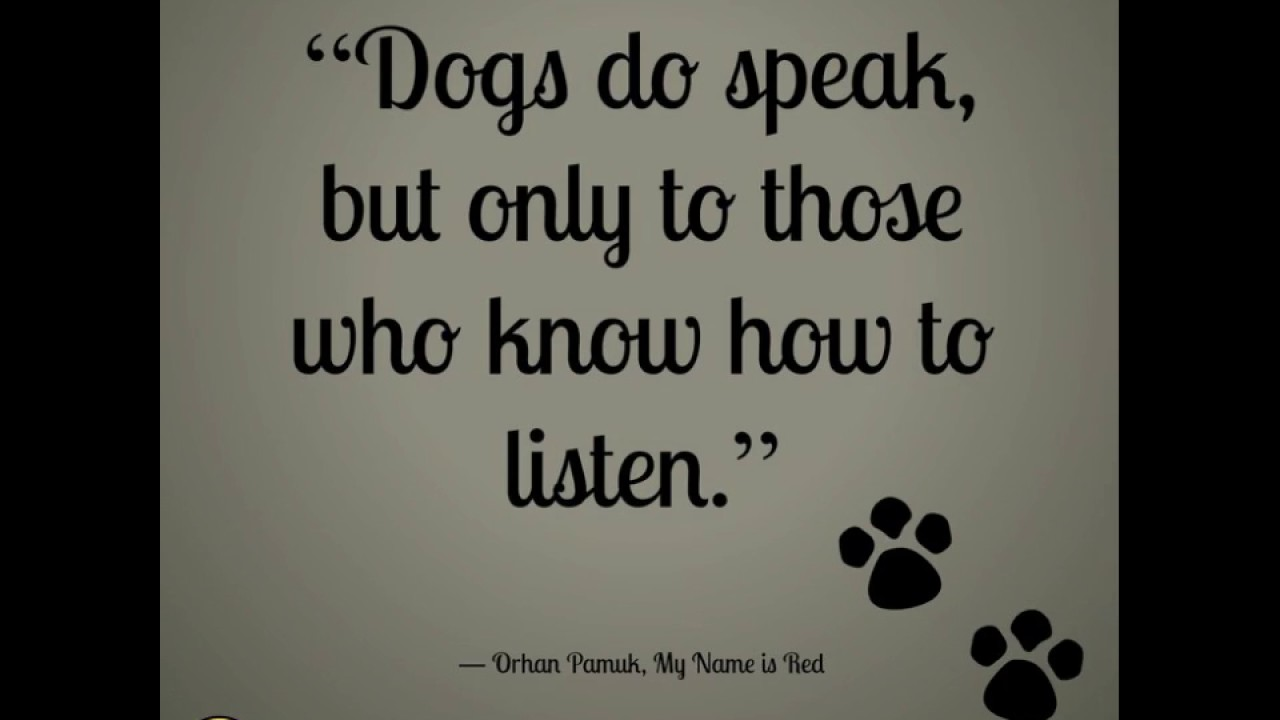 I Love My Dog Quotes Sayings About Dogs  Dog Quotes  Youtube