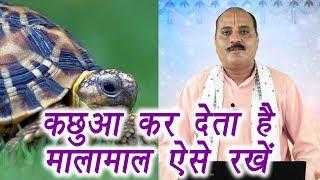 Importance of Tortoise in Vastu | वास्तु शास्त्र में कछुए का महत्व | कर देता है मालामाल | Boldsky