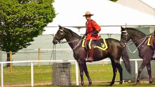 The Royal Canadian Mounted Police at Windsor