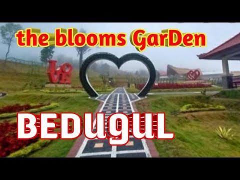 explore-the-blooms-garden-bedugul