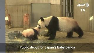 Oh, how cute: Tokyo crowds flock to see baby panda on first day