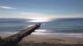 13. Seacliff Beach and Whale Symbolism