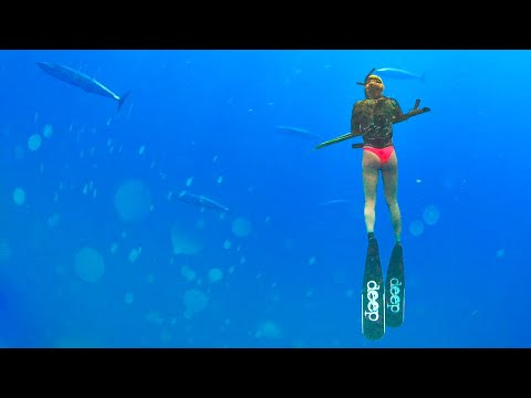 [Pt 3/4] WAHOO FEVER! - Spearfishing In Key West Hunting For Wahoo