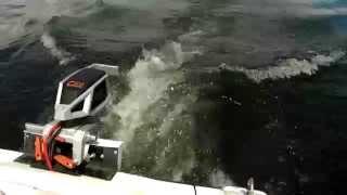 Bateau électrique Panther - Moteur Torqeedo Cruise 2