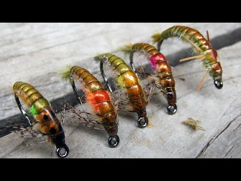 Austroperlidae stonefly nymph easy fly tying instructions by