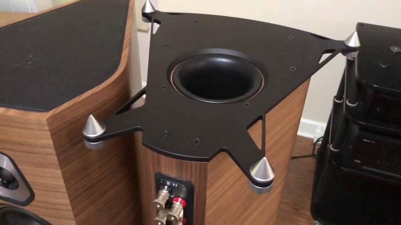 Sonus faber Sonetto VIII Review Video